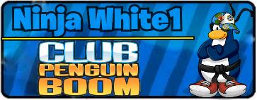 Ninja White1